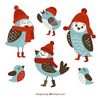 Симпатичные птицы с зимней одежды