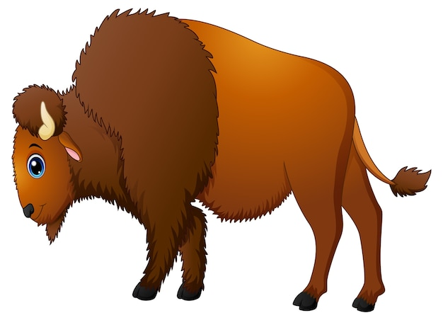Cute bison cartoon