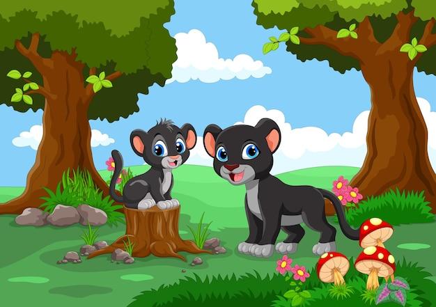 Милая черная пантера в лесу