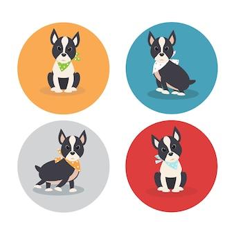 귀여운 보스턴 테리어 강아지 만화 캐릭터