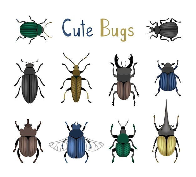 Cute bug icon set. cartoon nature of macro insects, cute small colorful beetles, vector illustration of entomology science creatures isolated on white background