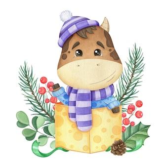 가문비 나무와 선물 상자에 귀여운 황소. 수채화 그림