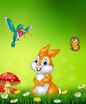 Симпатичный кролик с красивой зеленой травой