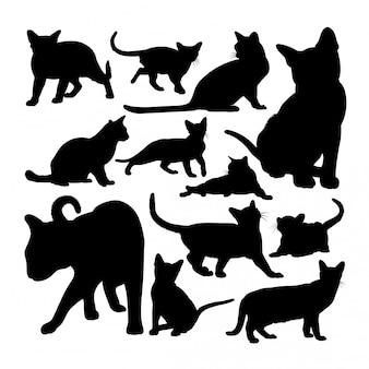 かわいいビルマ猫動物のシルエット