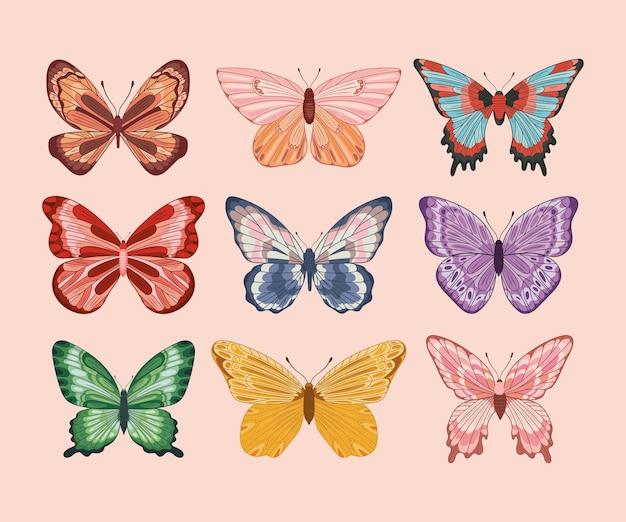 Cute butterflies set