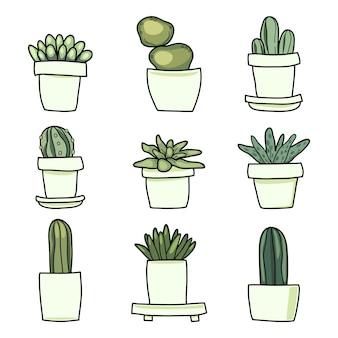 Cute cactus cartoon set
