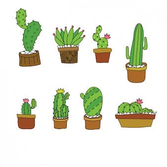 Cute cactus collection in flat design