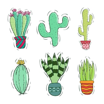 Cute cactus collection with colorful style