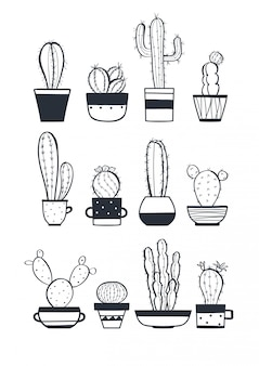 Cute cactus set