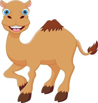 귀여운 낙타 만화 포즈 웃는 흰색 배경에 고립