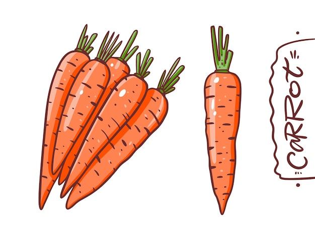 Набор сбора милый морковь. векторная иллюстрация. мультяшный стиль. изолированные на белом фоне.
