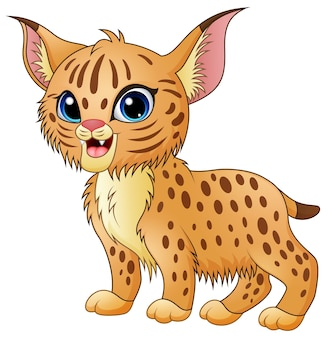 Cute cartoon bobcat