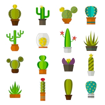 Cute cartoon cactus collection flat nature vector illustration.