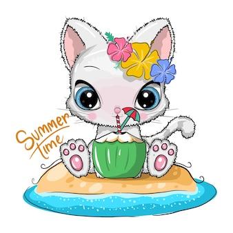かわいい漫画の猫はココナッツを飲みます。サマータイム