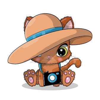 Cute cartoon cat with camera and hat in summer time