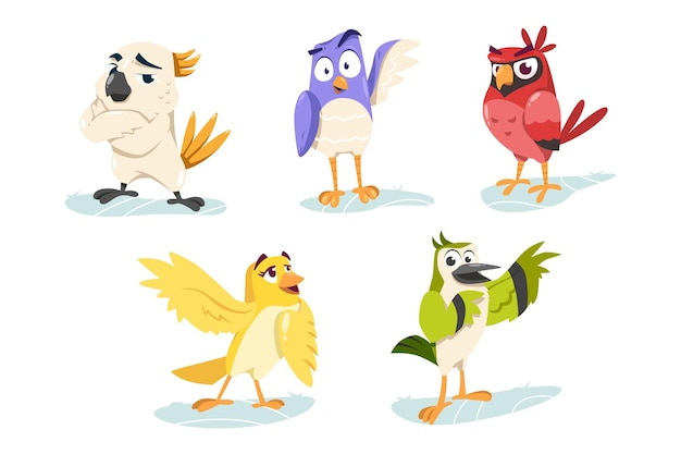 Cute cartoon colorful bird character collection set