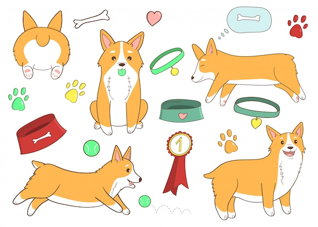 귀여운 만화 개 세트 웨일즈 어 corgi. 재미있는 강아지 생활. 개 관리 요소.