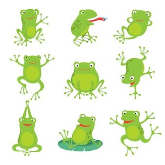 Cute cartoon frogs. green croaking toad on lotus leaves in pond