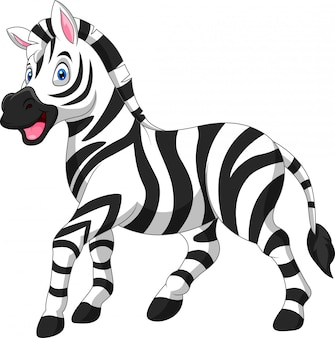 Cute cartoon funny zebra stand