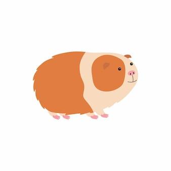 Симпатичная мультяшная морская свинка. векторные иллюстрации, изолированные на белом фоне.