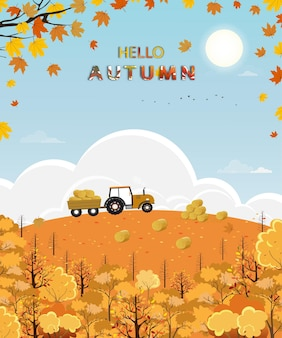 Cute cartoon hello autumn forest with bright light on sunny day, mid autumn harvest landscape farm field, tractor, haystack, hill and maple leaves falling with yellow foliage, fall season background