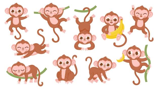 귀여운 만화 정글 아기 원숭이 캐릭터가 포즈를 취하고 있습니다. 이국적인 열대 동물 마스코트, 원숭이가 나무에 뛰어오르고, 바나나를 들고 잠자는 원숭이 캐릭터 세트를 다양한 그림으로 표현합니다.