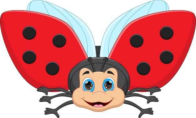 Cute cartoon ladybug on white background
