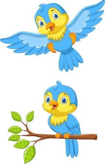 Милый мультфильм маленькие птички на белом