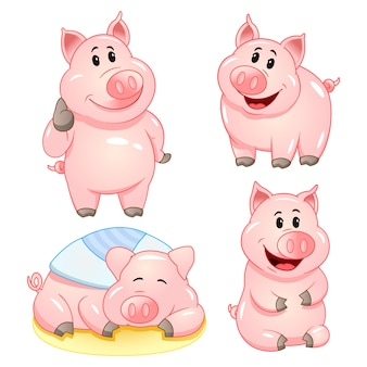Cute cartoon pig characters in various poses.  illustration set.