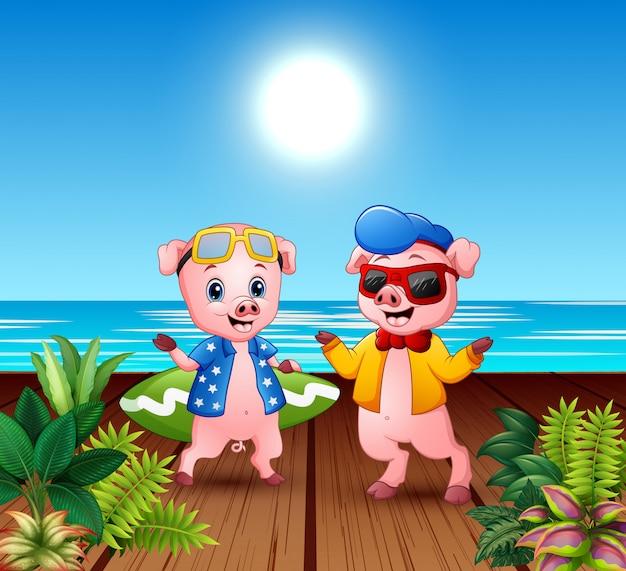 Cute cartoon pigs in summer holiday