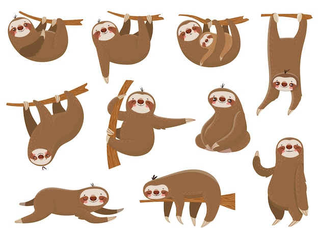 Cute cartoon sloths