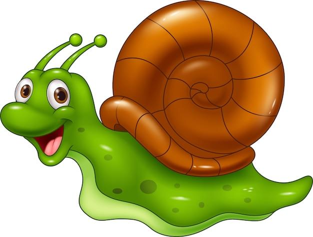 Cute cartoon snail on white background