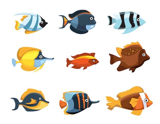 Cute cartoon tropical exotic freshwater aquarium