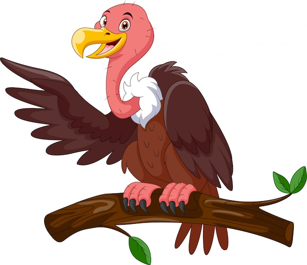 Cute cartoon vulture stand on a branch