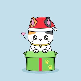 귀여운 고양이가 선물 상자에서 나온다