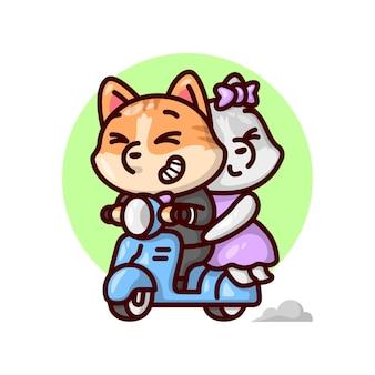 Милая кошка пара едет на синем самокате