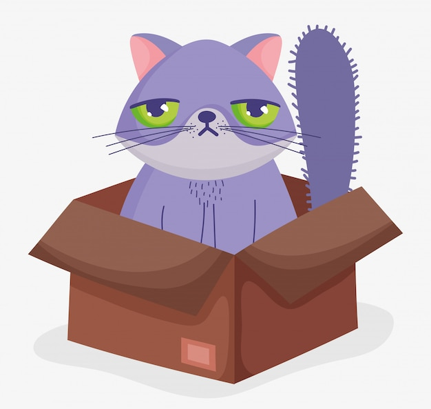 Cute cat face sad in box domestic cartoon animal, pets illustration