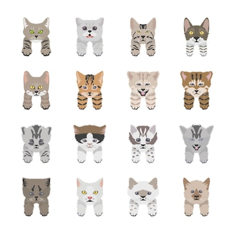 Cute cat faces flat icons