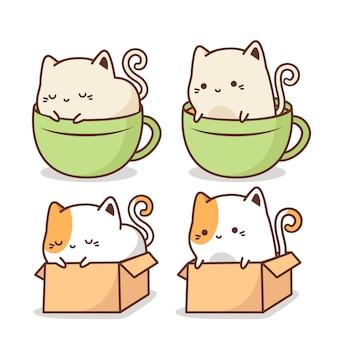 Милый кот внутри коробки и чашки