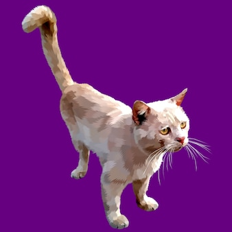 Cute cat looking up isolated on a purple background