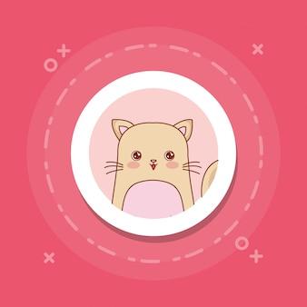 Милый кот на розовом