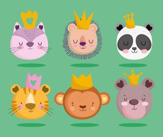 Cute cat panda lion monkey bear tiger crown animals faces cartoon set