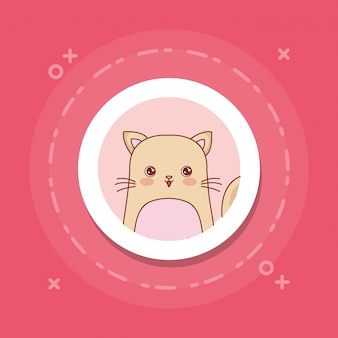 Cute cat on pink