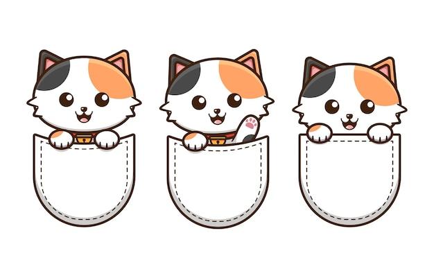 Cute cat in the pocket   design Premium Vector