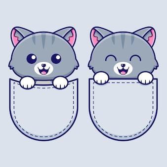 Of cute cat in pocket