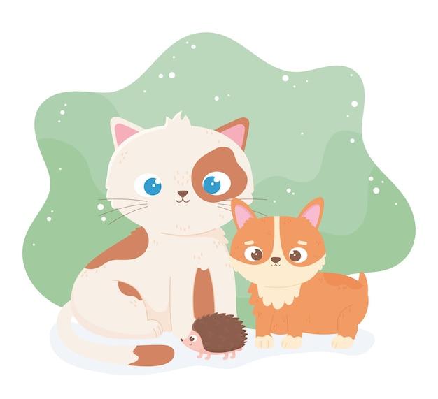 Cute cat puppy and hedgehog cartoon animals