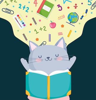 Cute cat reading book