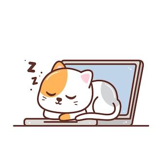 白で隔離のラップトップで眠っているかわいい猫