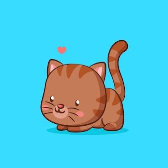 Милый котик позирует со стартовым прыжком
