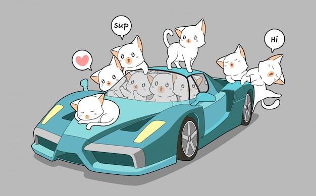 Cute cats and blue super car